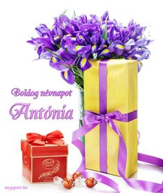 Share Pictures, Animated Gifs, Anton, Gift Wrapping, Gifts, Gift Wrapping Paper, Presents, Wrapping Gifts, Favors