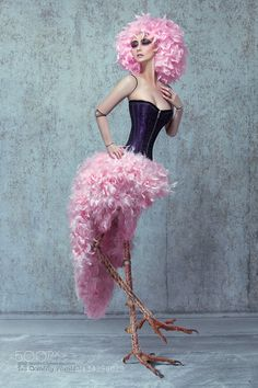 Pink Bird Doll - Pinned by Mak Khalaf Model: Mossy Make-up: Sara Szpak Photo and digital art: Quality Pixels Photography (Marcin & Sylwia Ciesielski) Fine Art birddigital artdollfeathersfine artooakpinksurreal by qpixels