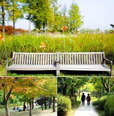 Top Nine Best Photo Spots Hidden in Seoul!   Official Korea Tourism Organization