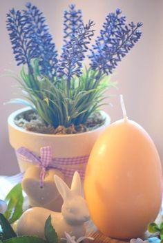 Planter Pots, Blog, Blogging