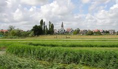 View of Markendt