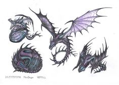 Skrill sketches by MeerDragon Got Dragons, Httyd Dragons, Dreamworks Dragons, Dragon Project, Dragon Defender, Beautiful Dragon, Dragon Games, How To Train Dragon, Dragon Art