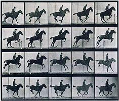 Texte expliquant l'histoire de la décomposition des images