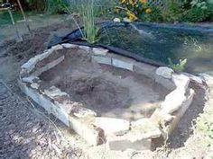 Building a backyard pond with florida pond management on for Garden pond management