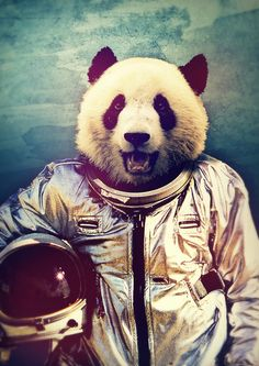 Panda-Astronaut The Greatest Adventure Art Print. Rubbishmonkey on Illustration Arte, Illustrations, Poster S, Greatest Adventure, Art Plastique, Oeuvre D'art, Artsy, Creatures, Art Prints