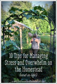 Need help managing stress and overwhelm on the homestead? Here are 10 tips to help you find peace and balance in stressful times. #homesteading #homesteadlife #stressmanagement Farm Landscaping, Farm Lifestyle, Pioneer Life, Modern Homesteading, Life Choices, Healthier You, Feeling Overwhelmed, Finding Peace, Outdoor Projects