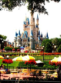 Disney World, by diane king