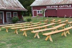 Hand built benches from the tree's on the property done by the crew at Bishop Farm Bed and Breakfast