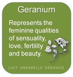 Geranium represents the feminine qualities of sensuality, love, fertility and beauty.  Organic Aromatherapy hints and tips from Lucy Annabella Organics. www.lucyannabella.com #organic #aromatherapy #tips