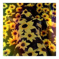 #LUVIT  I want to hide among the flowers  #FlowerCrown #FlowerChild #floralhalo #flowerhalo #flowercrowns #flowerheadband #flowerchildren #fashionistas #bodypaint #fashionable #fashionaddict #fashiondaily #fashionforward #fashionlove #fashionoftheday #fashionbloggers #festivalfashion #festivallife #bohostyle #bohofashion #bohemian #bohemianstyle #bohemianfashion #BoHoChic