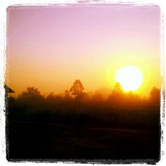 Palangkaraya di Kalimantan Tengah