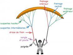 Le poste de pilotage-4-Les commandes de frein   pilotage-parapente.com