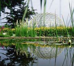 Universität Düsseldorf: Botanischer Garten