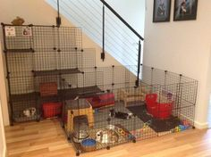 Diy Bunny Cage, Diy Guinea Pig Cage, Bunny Cages, Rabbit Cages, House Rabbit, Rabbit Toys, Rabbit Life, Guinea Pigs, Rabbit Pen