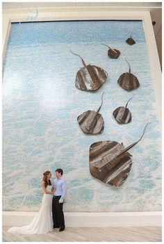 Cayman Islands destination wedding - Camana Bay stingray wall. Photo by Rebecca Davidson