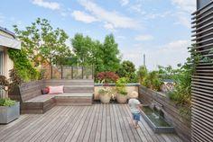 Hydrangea Seeds, Hydrangea Care, Liquid Fertilizer, Good Environment, Potting Soil, Vegetable Garden, Home And Living, Shrubs, Deck