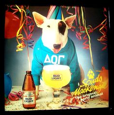 Spuds Mckenzie Bud Light dog - for some reason it was ok for kids to have toys of a beer mascot.
