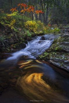 Unwinding - This is an image I photographed last October along Horton Creek near Payson. I loved how these cascades made these leaves swirl in this small pool during a long exposure. Already thinking of autumn, and how I am ready for more fall colors!
