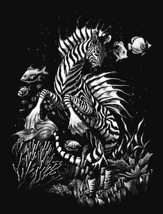 Zebra Hippocampus