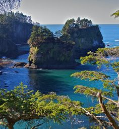 Olympic National Park,USA: Gorgeous, and close to home!