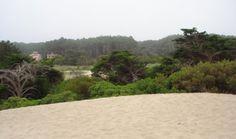 Reserva faro Querandi, Villa Gesell, Argentina