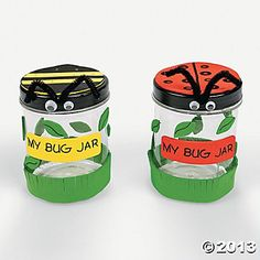 """My Bug Jar"" Craft Kit"