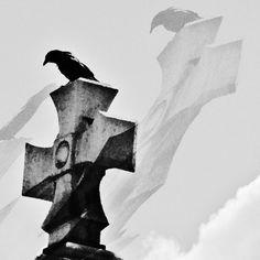 Nel silenzio diffuso di quel luogo, interrotto dal profondo gracchiare del corvo che abitava sull'abete accanto alla cappella, si rilassava con la schiena appoggiata ai marmorei epitaffi, mentre il sonno prendeva possesso del tempo. Lento come il gelo che cristallizza ciò che aggredisce, risaliva la sua mente anestetizzandola con tocco leggero fino a spegnerla, sinapsi dopo sinapsi. [...]