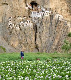 Phuktal Monastery, Kashmir, India (built in 12th century of twigs & mud)