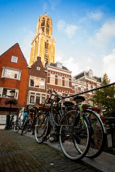 13 Reasons Why The Netherlands Must Be On Your Bucket List AmonGraf Utrecht, Amsterdam, Costa, Kingdom Of The Netherlands, 13 Reasons, Cool Places To Visit, Belgium, World, Travel