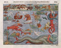 Münster_Thier_2.jpg (1475×1184)