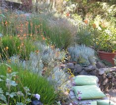 San Francisco Bay Area hillside garden filled with Mediterranean plants and built-in stone bench. Bulbine frutescens 'Hallmark', Lavender, Lavender Cotton. Photo: © Eileen Kelly, Dig Your Garden Landscape Design