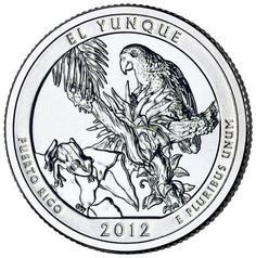 Quarter Features Puerto Rican Parrot One of the quarters from the U. Mint's American the Beautiful Quarters Program features a Puerto Rican parrot from the El Yunque National Forest. Bullion Coins, Silver Bullion, Virginia Occidental, America The Beautiful Quarters, El Yunque National Forest, Puerto Rico History, Puerto Rican Culture, Quarter Dollar, Coin Shop