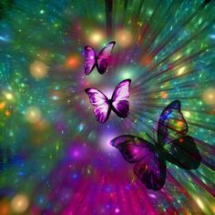 Elke ademteug die we nemen, elke stap die we zetten, kan vol vrede, vreugde en gemoedsrust zijn. We hoeven alleen maar wakker te zijn, levend in het huidige moment.  Thich Nhat Hahn