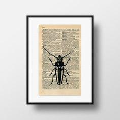 Longhorned Beetle Dictionary Art  Art print on by FramedBooksArt