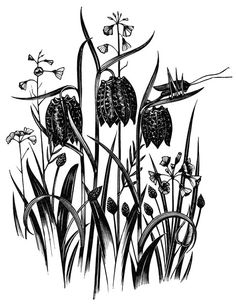 Robert Gibbings, wood engraving from 'Sweet Thames Run Softly', Little Toller Books.