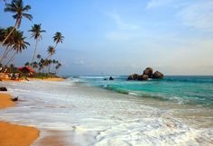 Playa de Koggala: la playa más larga de Sri Lanka. A pesar de estar ubicada cerca de la zona turística de Unawatuna, se mantiene despejada e inexplorada. Esta playa es ideal de diciembre a febrero para observar a las tortugas llegando a las cálidas arenas de las costas para depositar sus huevos. Tanto Kogalla como Beruwella tienen proyectos de protección de tortugas muy interesantes para disfrutar de esta experiencia. 11 playas de Sri Lanka que debes conocer