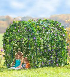 Grow a lush, leafy fairytale dwelling right in your own backyard. It's a great way for children to observe nature blooming around them! Set up the framework, plant seeds around the base and watch as nature grows a living roof and walls up, over and around it.    This is completely doable with PVC piping and bird netting.