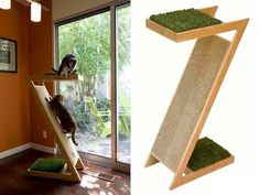 stylish cat climbing tree - Google Search