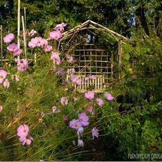 Appunti di viaggio–In punta di piedi nel giardino fatato di Camilla - by tyziana - Furighedda gardening