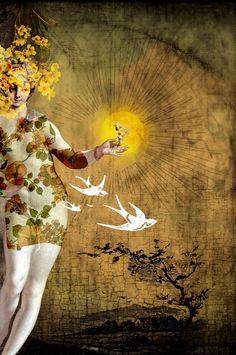 the sun | Catrin Welz-Stein