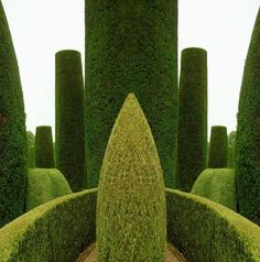 English Garden Fantasy #4 by David Lewis Baker - One of a series of montage works created from photographs of a famous garden with topiary in a Warwickshire National Trust country house, taken in late August 2006.
