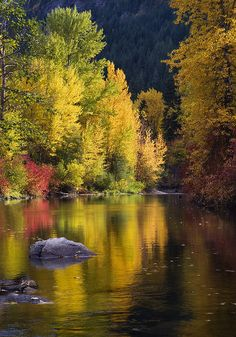 Nason Creek, Stevens Pass, Okanogan-Wenatchee National Forest, Washington