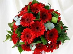 Send Remarkable You A bouquet of 18 Red Gerbera flowers flowers to chennai. Winni has made it easy to send flowers to chennai Send Flowers Online, Order Flowers, Flowers Bunch, Fresh Flowers, Beautiful Bouquet Of Flowers, Amazing Flowers, Flower Images, Flower Pictures, Flowers Pics