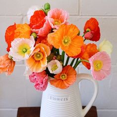 Blooming poppies making everything smell wonderful by elsas_wholesomelife Cut Flowers, Fresh Flowers, Colorful Flowers, Beautiful Flowers, Timothy Green, Icelandic Poppies, Floral Photography, Decoration Table, Flowers Nature
