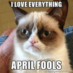 Grumpy Cat  - I love everything april fools