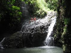 One of my favorite hikes since childhood, the trailhead is down the street from our house. Maunawili Falls, Kailua Hawaii
