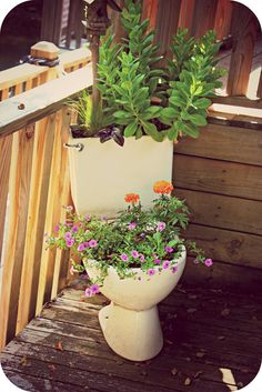 I'm not too keen on this idea but my husband thinks it's a great idea for our old toilet.
