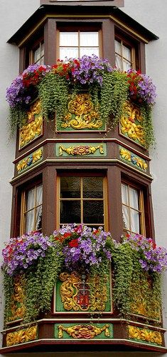 color and architecture and these amazing window boxes in Rottweil, Baden-Wurttemberg, Germany This is what I loved about Europe. The window boxes. Porches, Beautiful Buildings, Beautiful Places, Beautiful Gorgeous, Absolutely Gorgeous, Beautiful Pictures, Window Boxes, Window Sill, Flower Boxes