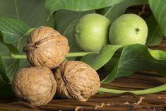 Walnut husk: natural brown highlights for the hair Raintree Nursery, Fauna Marina, Organic Acid, Fruit Seeds, Brown Highlights, Herb Seeds, Edible Plants, Companion Planting, Natural Brown