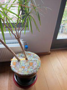 Baby proofing plants @etsy $15 veraveravera